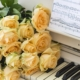 کتاب آموزش پیانو
