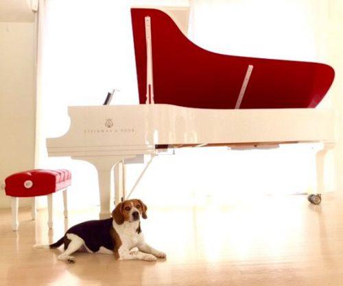 پیانو گرانقیمت Red Pops for (RED) Parlor Grand Piano,